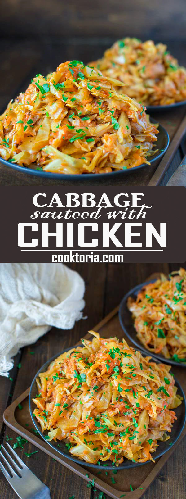 cabbage-sauteed-with-chicken-pin-1