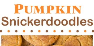 Two of the worlds best cookies in one! Pumpkin cookies meet snickerdoodles and they are out of this world.