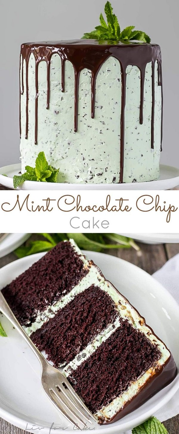 If you like mint you'll love this cake! With layers of decadent chocolate cake topped with a silky mint chip buttercream, this cake is a pure bliss!