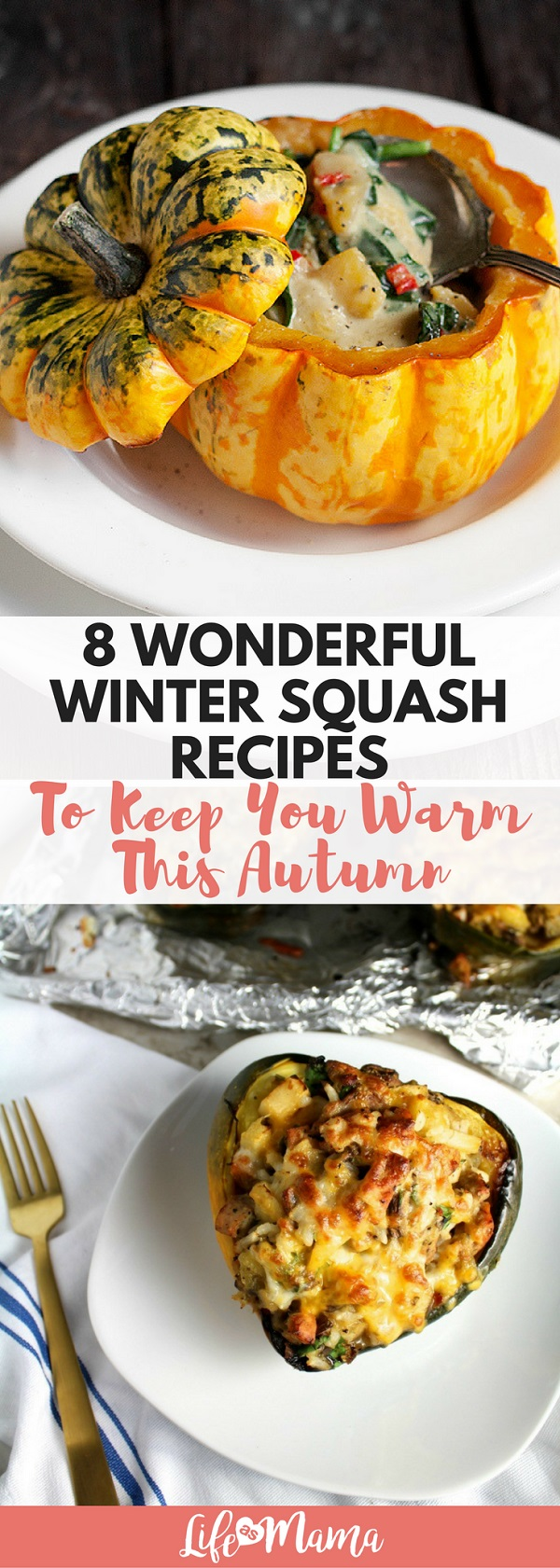 Here are some of the best winter squash recipes that you can make this fall and winter!