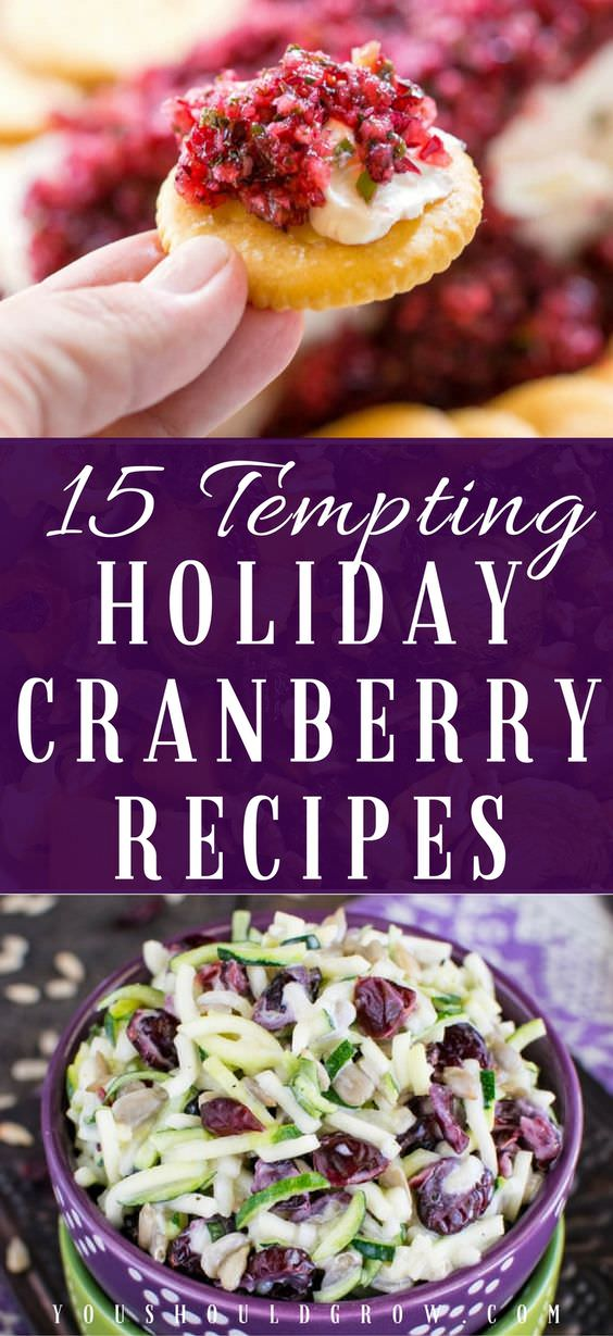 Check Out These 15 Tasty & Tempting Holiday Cranberry Recipes.